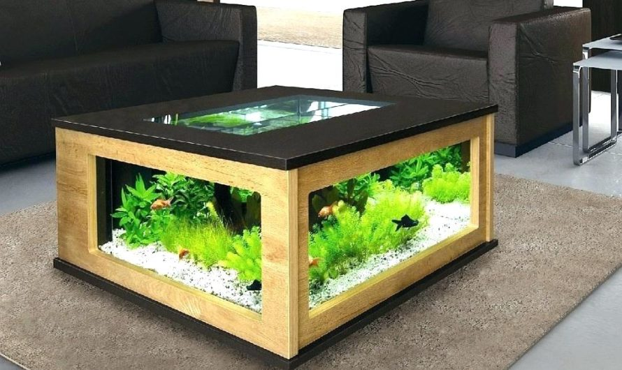 3 BEST FISH TANK COFFEE TABLES AVAILABLE FOR SALE
